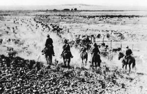 The Lobo Ranch 100 Years Ago